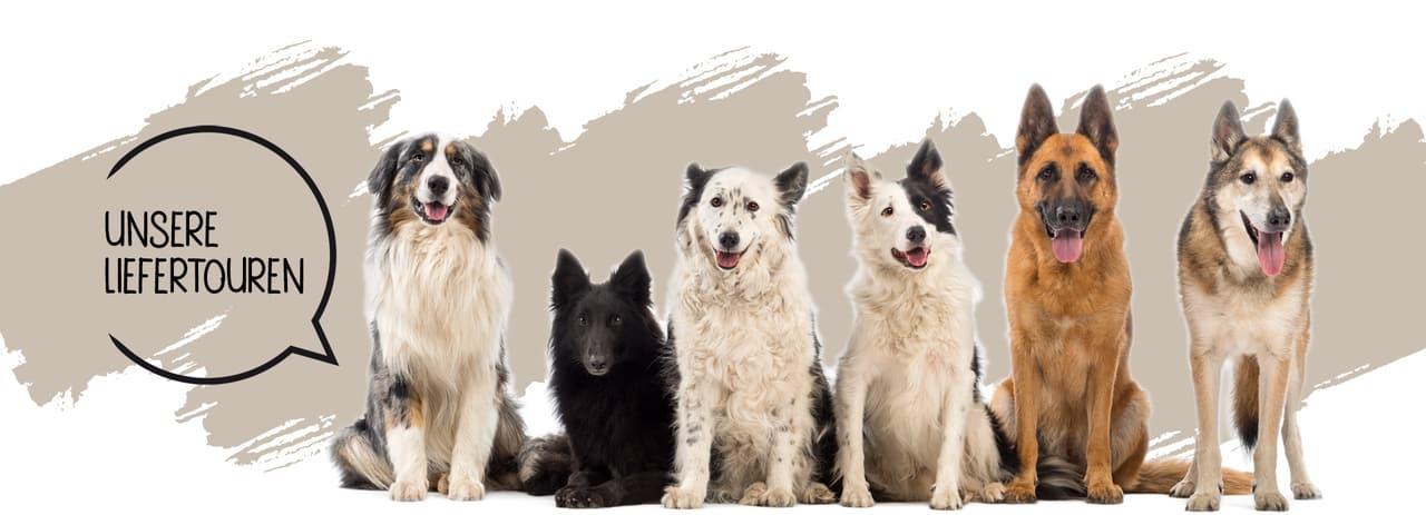 Liefertouren Hundefutter Stuttgart und Umgebung