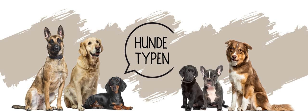 Das richtige Hundefutter für jeden Hund in Stuttgart