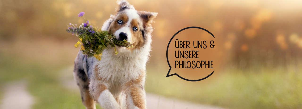 Hundefutter-Stuttgart-natürlich und regional-Barfen
